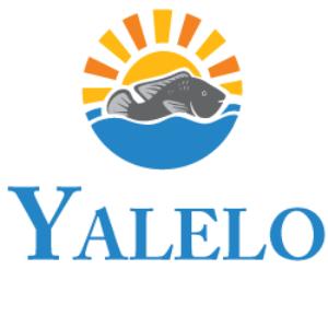 Yalelo Limited