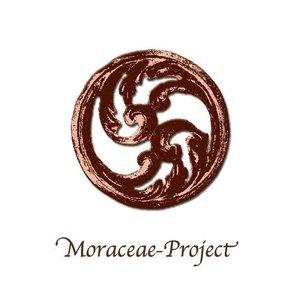 Moraceae-Project